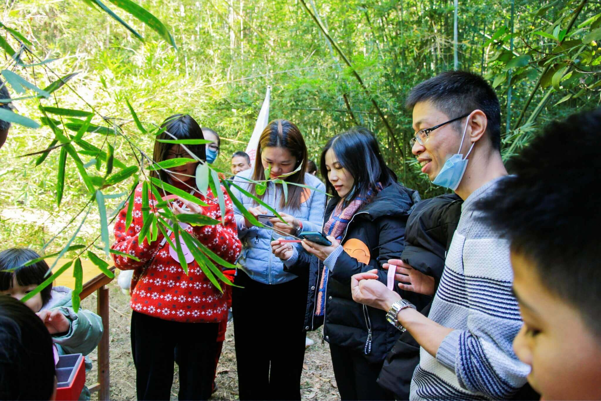 ABPower find treasure in Bamboo forest .jpg